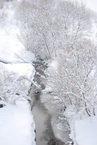 winter7-1.jpg