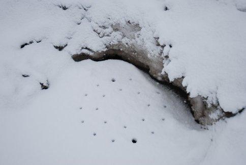 winter7-2.jpg