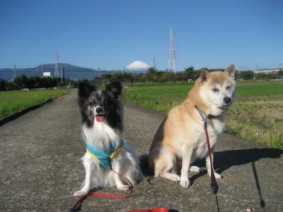 富士山とコラボ①