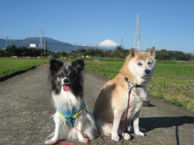 富士山とコラボ②