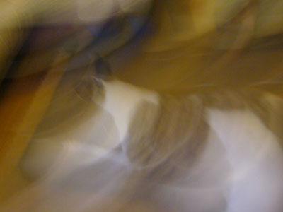 09aug014.jpg