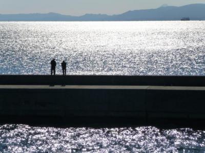 錦江湾の光と海