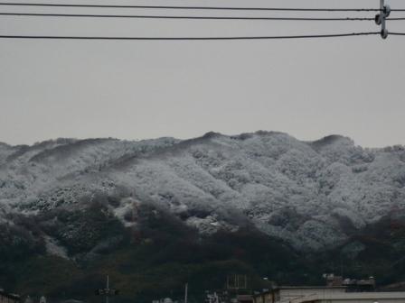 半分だけ雪