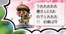 Maple0004_20090527023841.jpg