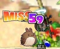 Maple0057_20081201231355.jpg