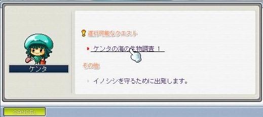 Maple0074_20081201233141.jpg