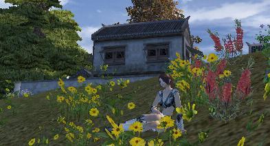 お花畑でひとやすみ