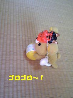 リラ555