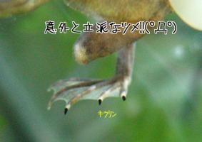 20070124213934.jpg