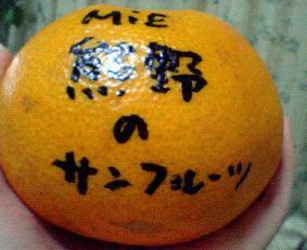 NEC_0410mikans.jpg