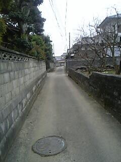 20060220175418.jpg