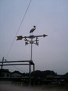 20060226160644.jpg