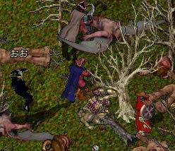 20050211ocllo2.jpg