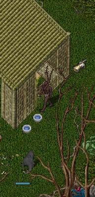 20050219yukigassen2.jpg