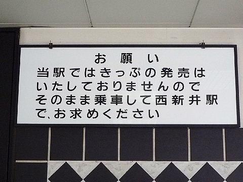 daisimae8004.jpg