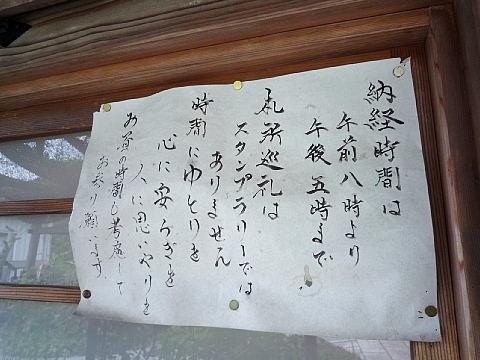 hashidaTT07.jpg