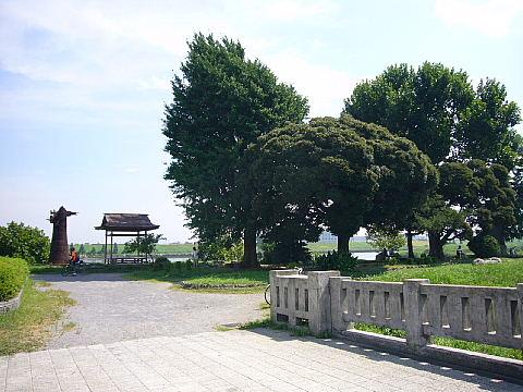 iwabuchii0115.jpg