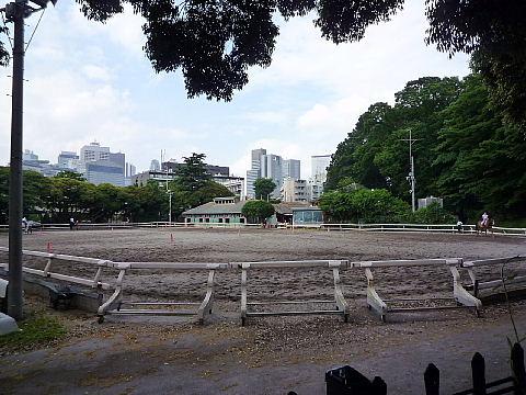 jyoubaa9006.jpg
