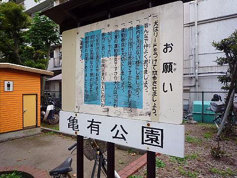 kamekox008.jpg