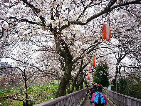 koshiga112.jpg