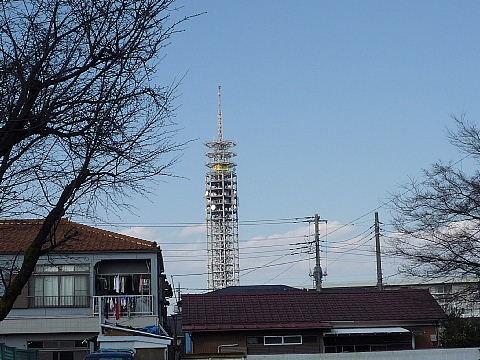 tanashio001.jpg