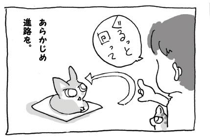 20080922_7.jpg