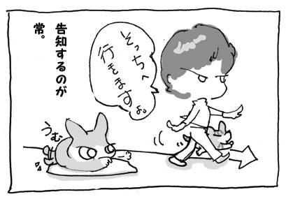 20080922_8.jpg