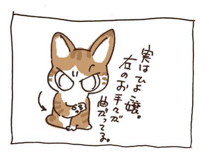 200810007_1.jpg
