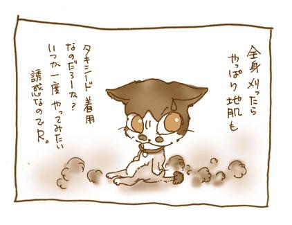 20081105_3.jpg