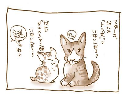 20081105_4.jpg