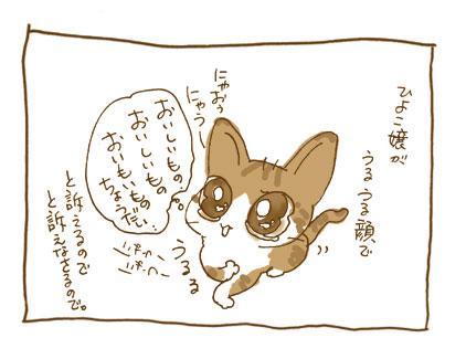 20081114_1.jpg