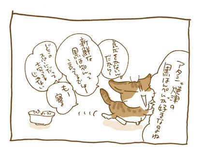 20081114_3_20081119215712.jpg