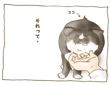 20081124_2.jpg