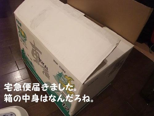 20090630_1.jpg