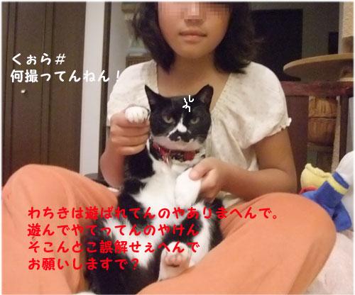20090817_6.jpg