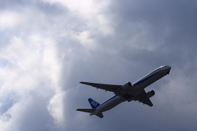 ANA B777-381 NH22@AFO(by EF100-400)