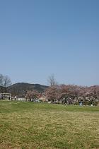 2005-04-09-1.jpg