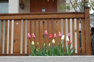 2005-04-12.jpg