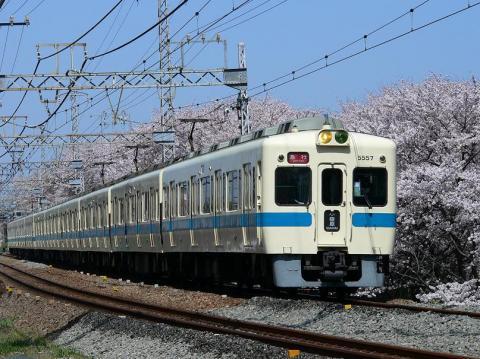P1030320s.jpg