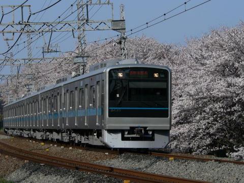 P1030475s.jpg