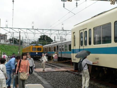 P1060181.jpg