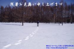 P2120104.jpg