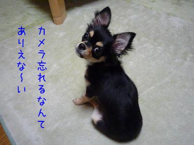 ありえな~い