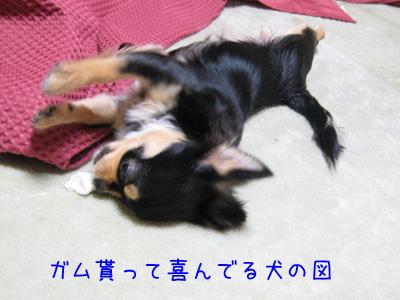 喜んでる犬の図