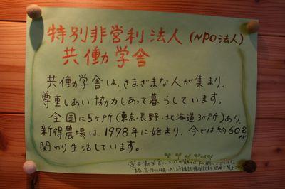 IMG_2807.jpg