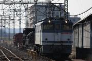 2009_01_19-006.jpg