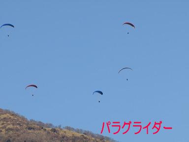 P1250642.jpg