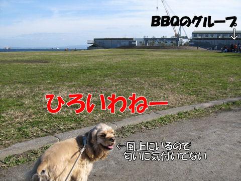 うみかぜ公園①