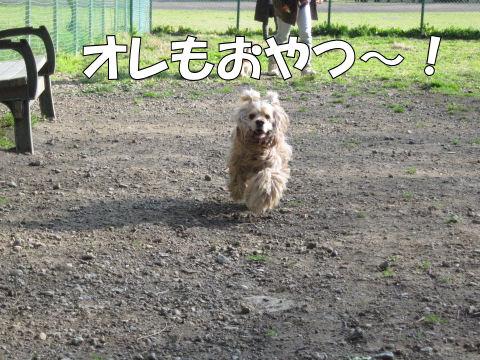 オレもおやつ~!