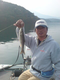 20081022 琵琶ヶ崎沖 ハヤ